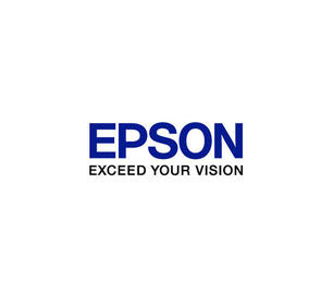 Epson F3000 Flushing Pad Set